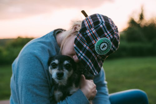 When it's not a forever home – Rehoming dogs